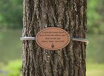 Oval metal tag with an enscription engraved into it on a spring on a tree.