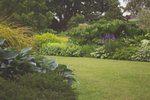 Photo of a garden.